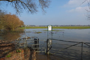 Portholme Meadow flooded
